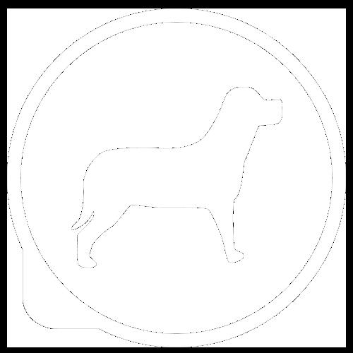 Cani ammessi